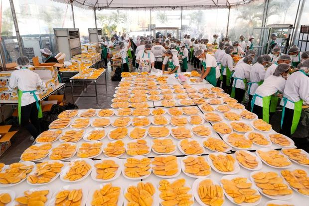 Workers prepare plates of mango with sticky rice, a popular local dessert for thousands of Chinese tourists, in an outdoor banquet in Muang Thong Thani in Nonthaburi province outside Bangkok on Jan 20, 2019 as part of a government promotion to attract more Chinese tourists. The huge event aims to set a Guinness World Record for the largest serving of mango sticky rice. (Photo by Krit Phromsakla Na SAKOLNAKORN / THAI NEWS PIX / AFP)