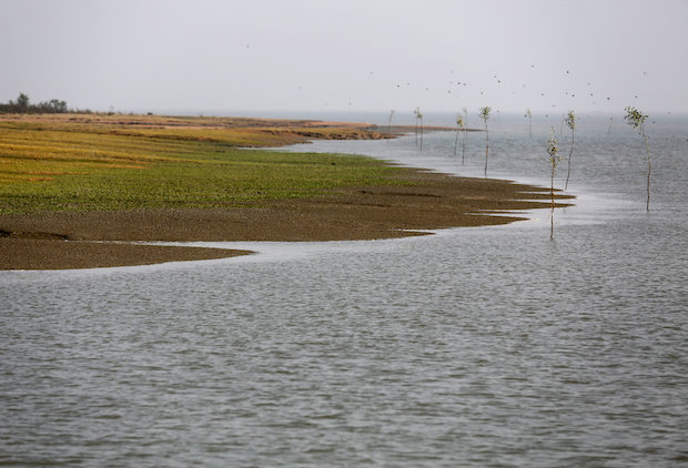 Low-lying Bhasan Char island in the Bay of Bengal emerged from the sea only 20 years ago. Humanitarian groups say the island is flood-prone, vulnerable to frequent cyclones and could be completely submerged during a high tide. (Reuters Photo)