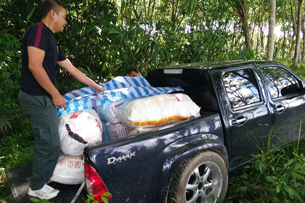 Sacks of kratom leaves are removed fro the back of the pickup truck abandoned at a rubber plantation in Saba Yai district, Songkhla, after a car chase. (Photo by Assawin Pakkawan)