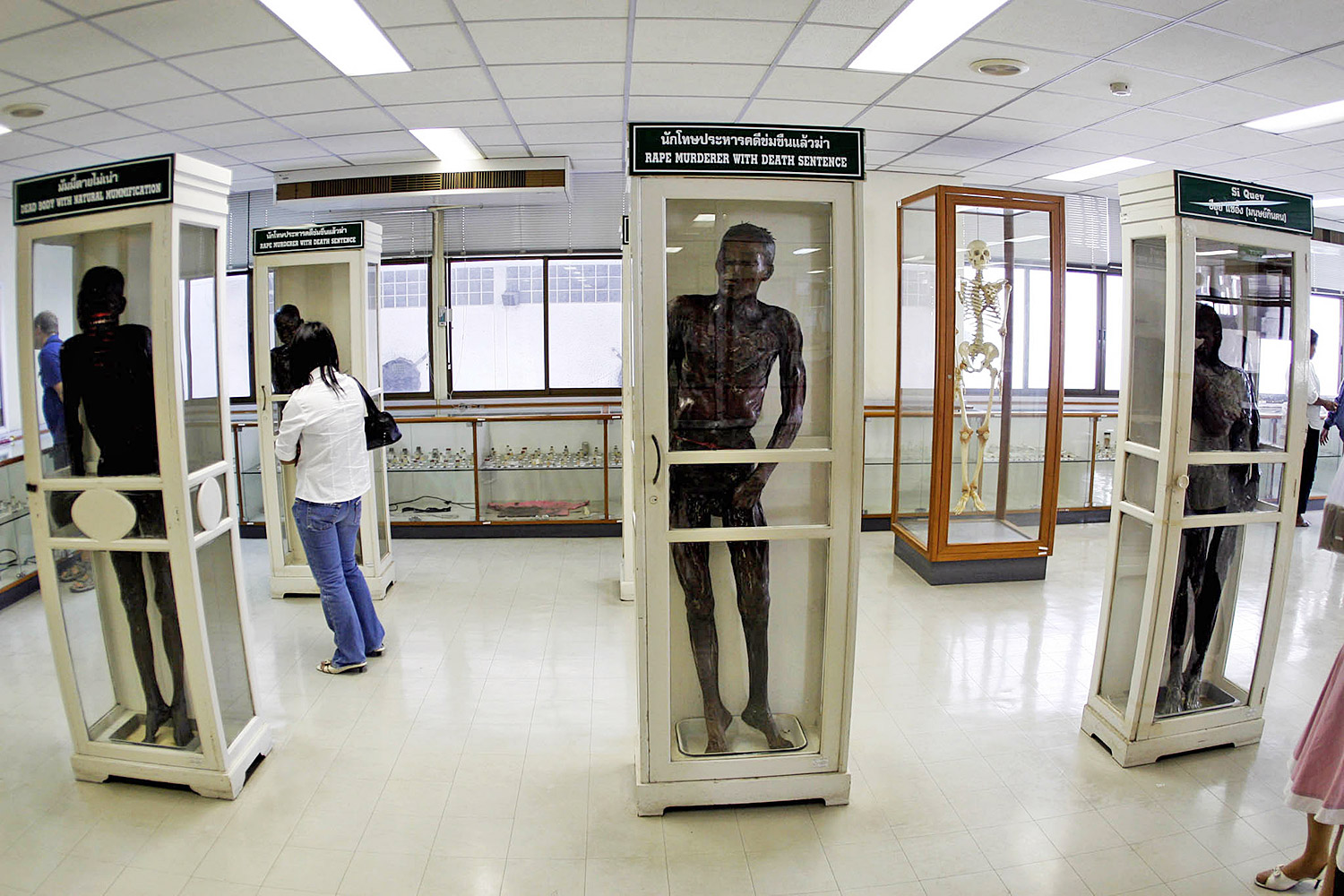 This file photo shows preserved human bodies at a museum at Siriraj Hospital, with the body of 'cannibal' Si Quey in the right showcase. (Photo by Patarachai Preechapanit)