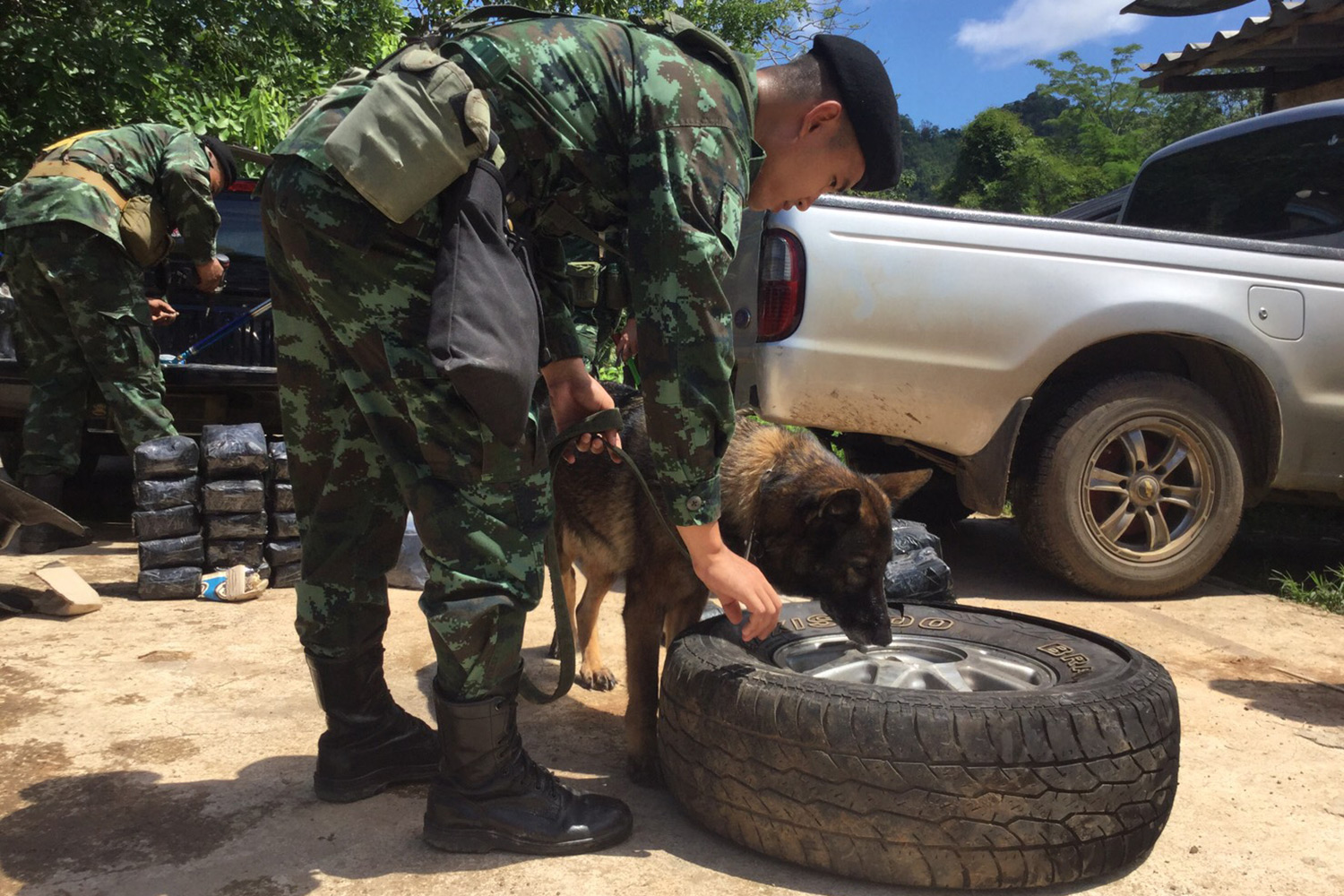 A sniffer dog detects drugs in a spare car tyre of two pickup trucks stopped for a search at a joint checkpoint in Sangkhla Buri district, Kanchanaburi, on Thursday. (Photo by Piyarat Chongcharoen)