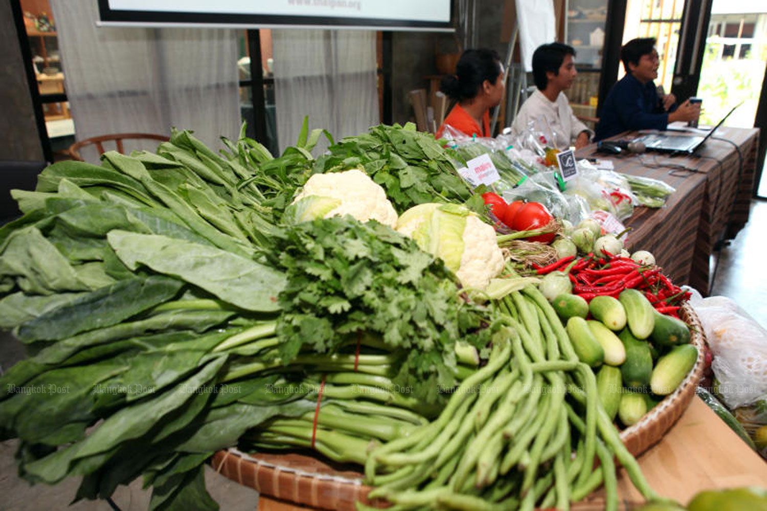The Thai Pesticide Alert Network announces the results of its latest survey on contamination of vegetables and fruit at a news conference in in Nonthaburi province on Wednesday. (Photo by Tawatchai Kemgumnerd)