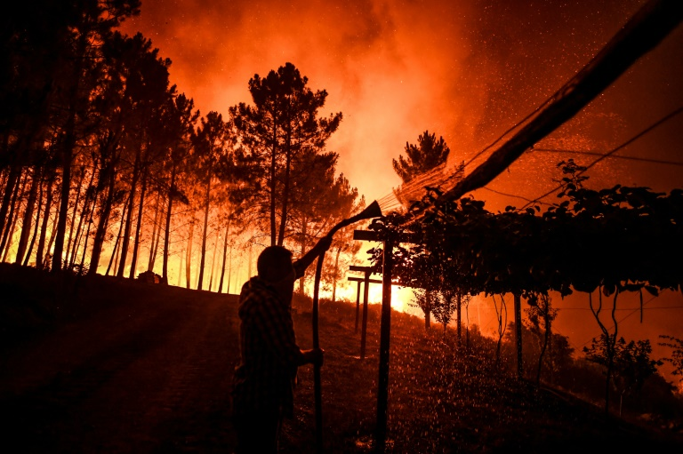 More than 1,000 firefighters battle Portugal wildfires