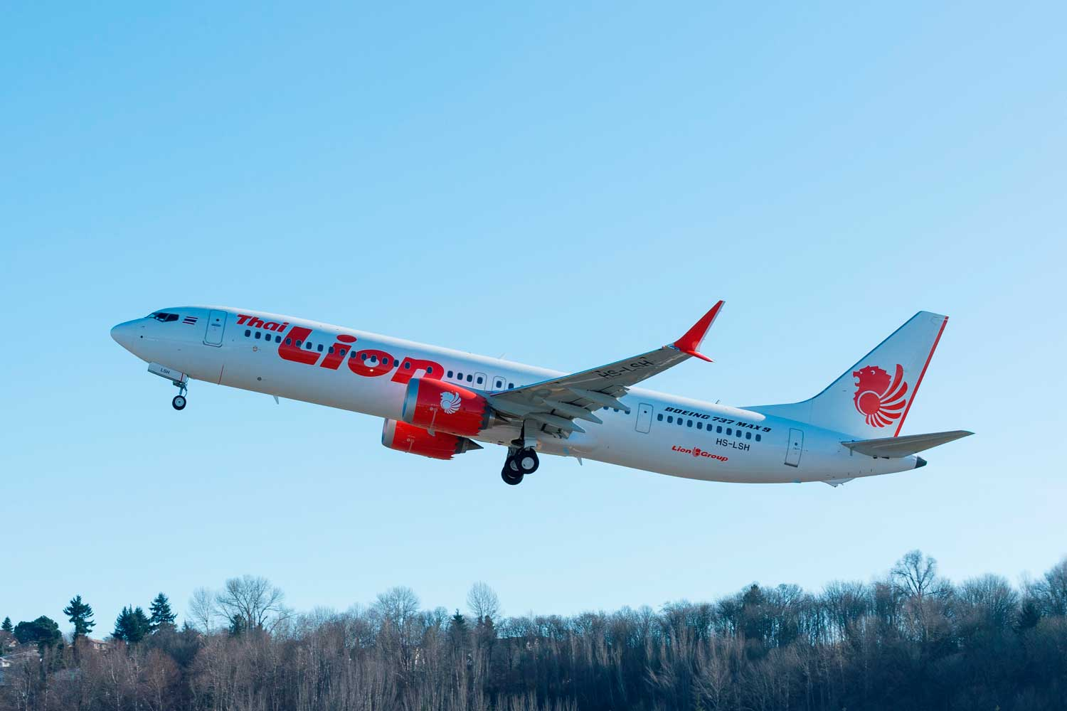 Image result for Boeing 737 MAX Lion Air