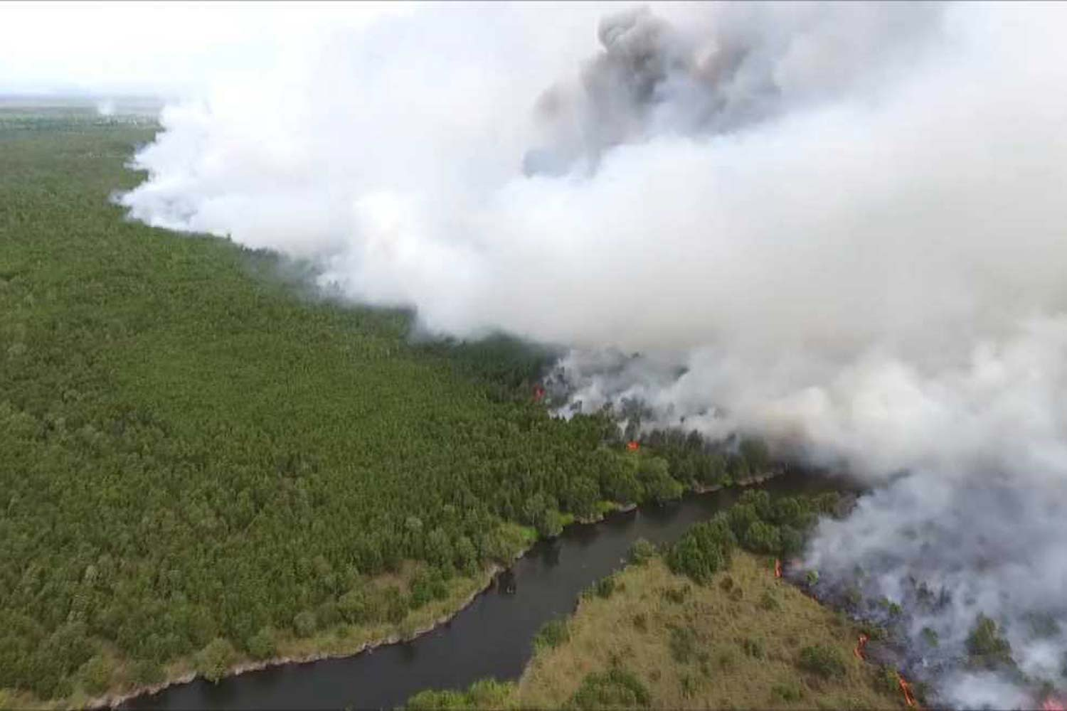 The wildfire in Khuan Khreng peat swamp forest on Monday. It has now spread to five districts in Nakhon Si Thammarat province. (Photo by Nujaree Raekrun)