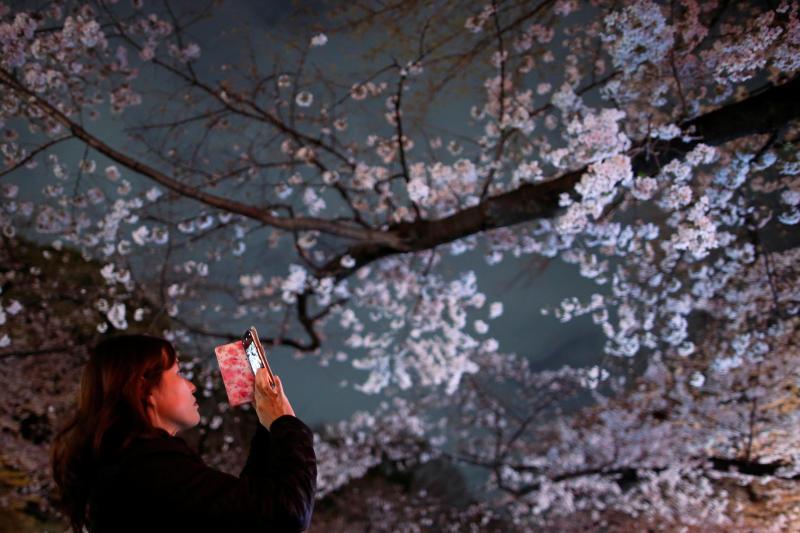 South Korean tourists shun Japan over row