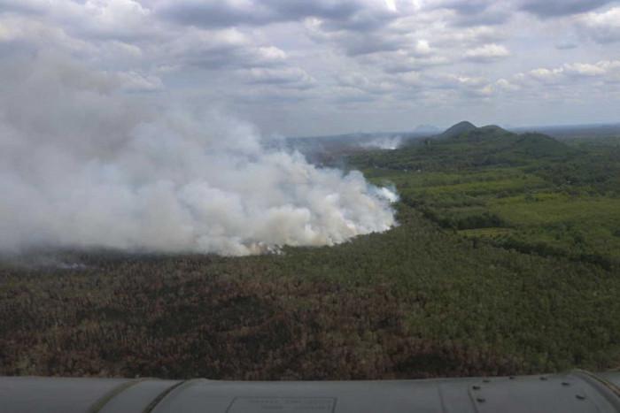 Land grabbers implicated in peat swamp blazes