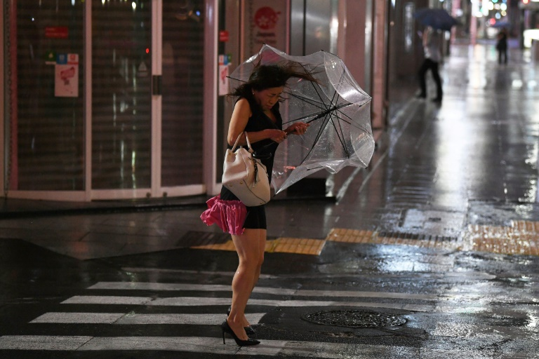 Typhoon Faxai battered Tokyo with ferocious winds and driving rain