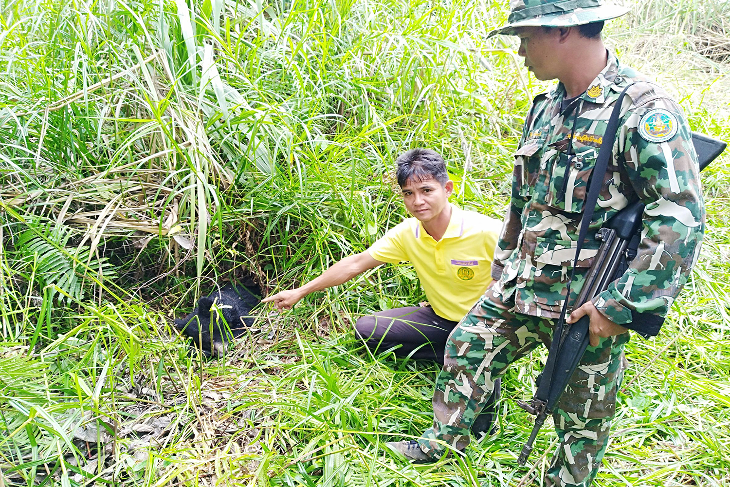 Rangers of Dong Yai Wildlife Reserve with the body of an Asian black bear, by a stream in Pa Kham district in Buri Ram province, on Tuesday. (Photo by Surachai Piraksa)