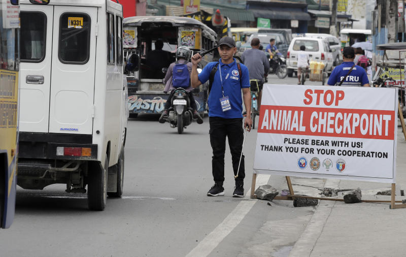 Local authorities man an animal checkpoint in suburban San Mateo township, Rizal province, east of Manila, Philippines to help prevent the spread of African Swine Fever virus that has affected the swine industry, on  Sep 10, 2019.  (AP file photo)