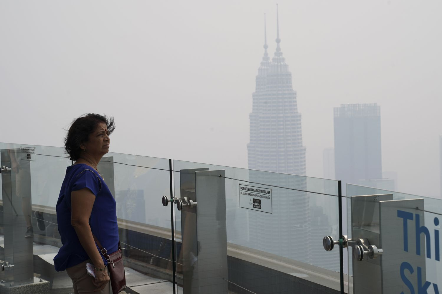 Indonesia doing everything it can to fight flames, says Joko