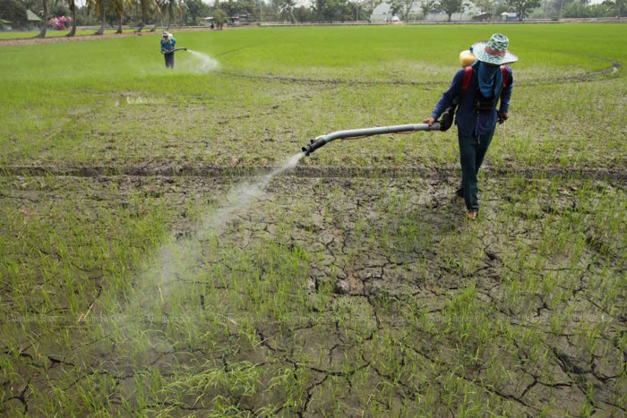 Anutin backs spray ban