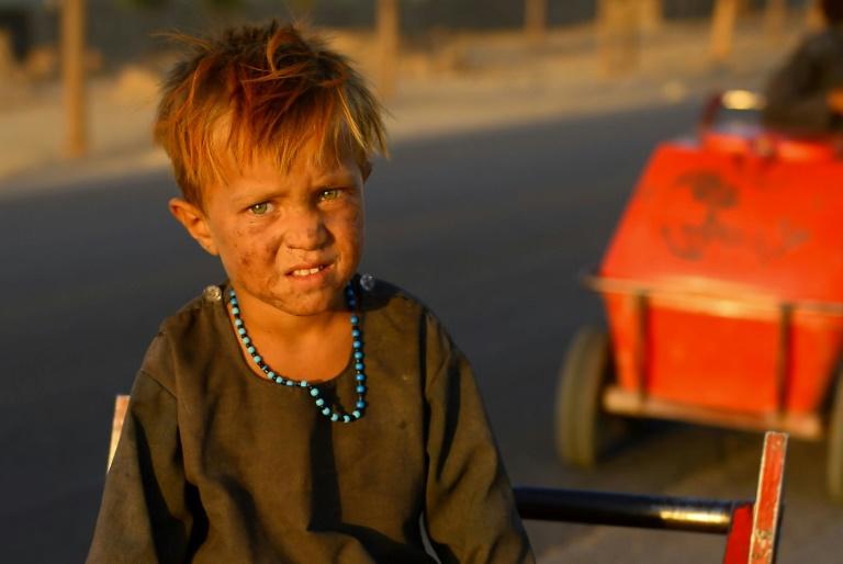 Escort girls in Ghazni