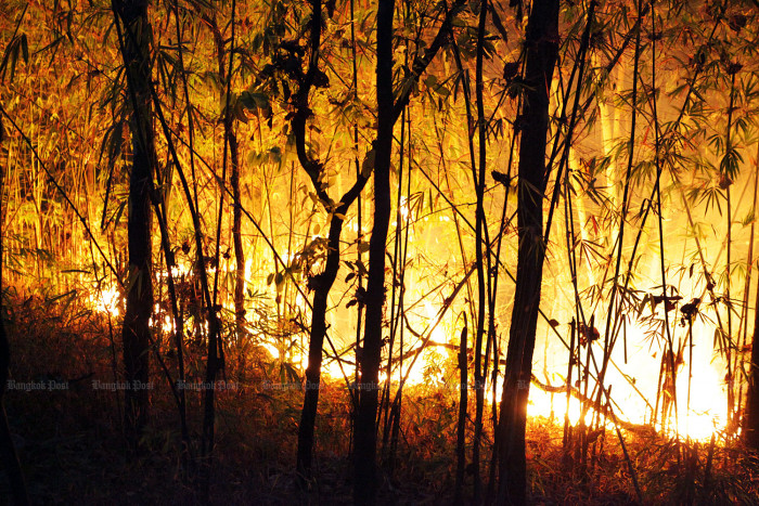 Parks officials pledge readiness for fire season