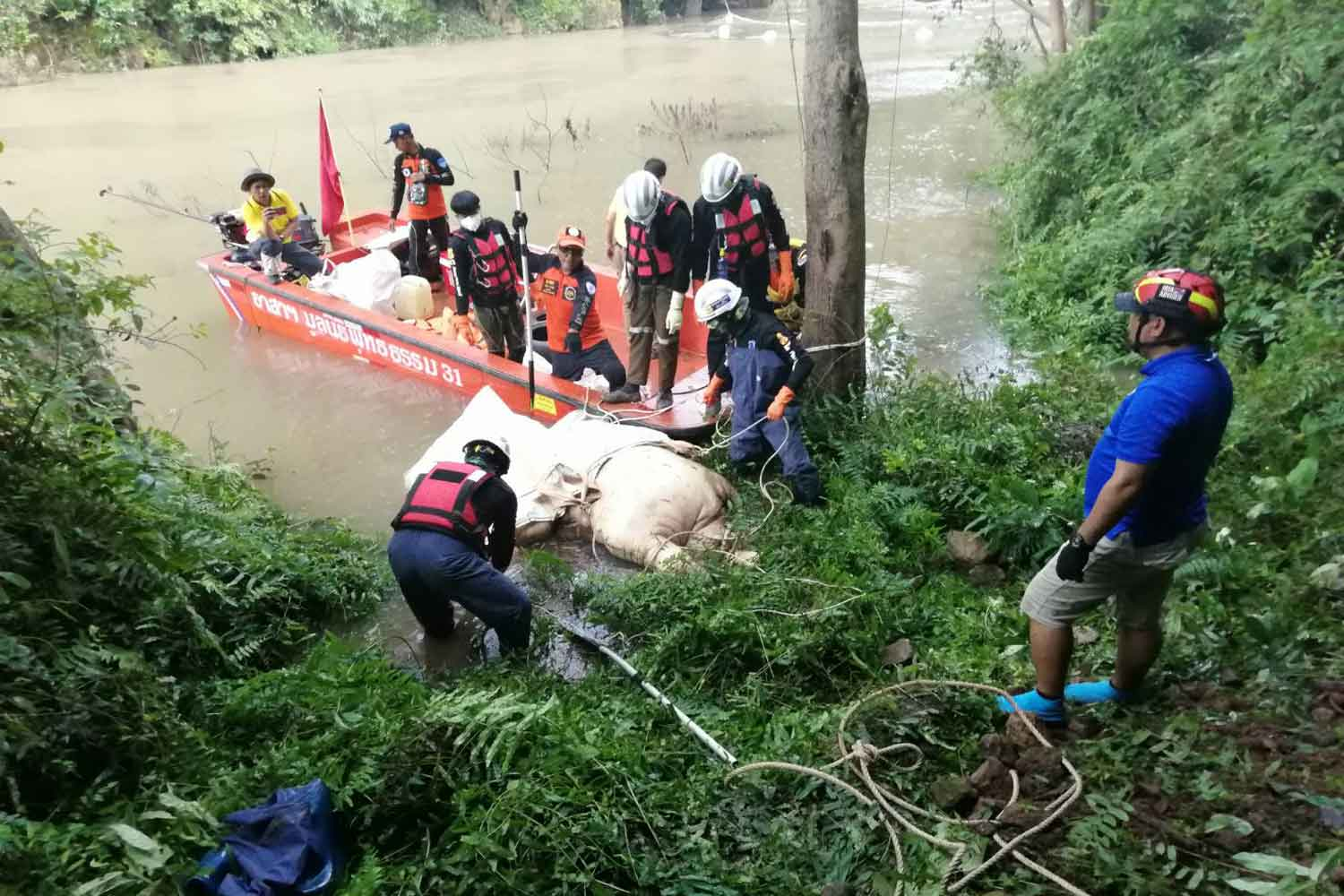 Park officials and rescue workers are retrieving the third carcass of wild elephants killed near the Haew Narok waterfall in Nakhon Nayok province on Monday. (Photo supplied)