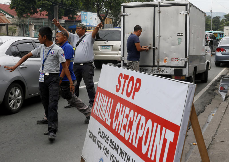 Local authorities flag passing cargo vans for inspection at an animal checkpoint in suburban San Mateo township, Rizal province, east of Manila, Philippines to help prevent the spread of African swine fever virus that has affected the swine industry Sept 10, 2019. (AP file photo)