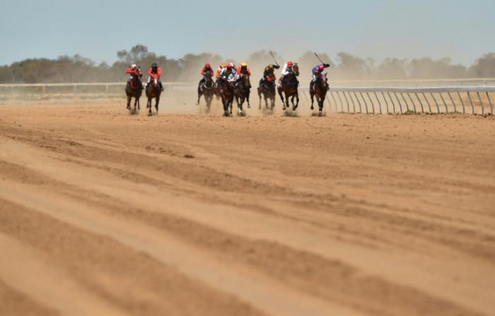 'Mass slaughter' of Australian racehorses rocks industry