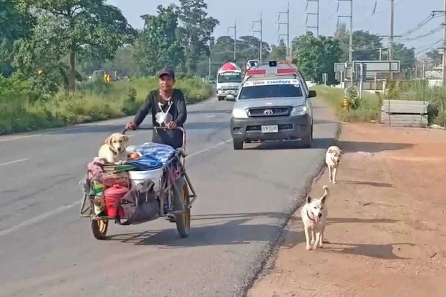 Sakchai Suphanthamat, 40, of Udon Thani, pushes his two-wheel cart with an urn containing the cremated ashes and bones of his wife, as he and his three dogs travel through Prachin Buri province on Saturday. (Photo by Manit Sanubboon)
