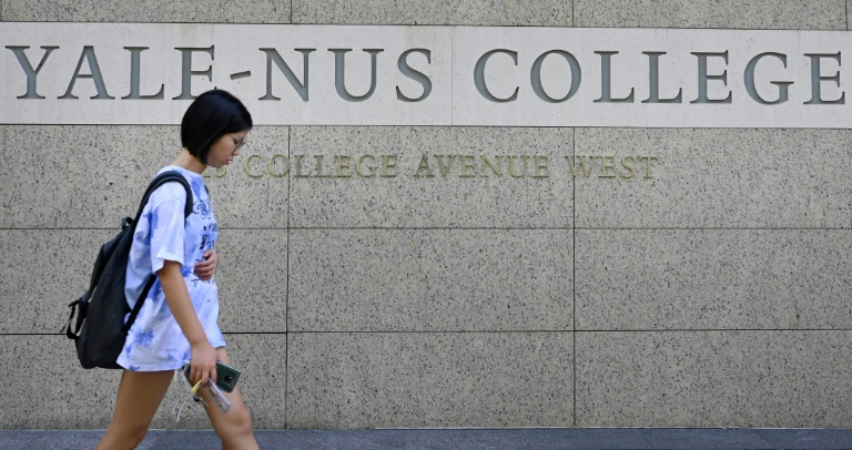 Yale's Singapore college has become embroiled in a row about academic freedom after axeing a course on dissent, with the controversy fuelling a wider debate on whether universities are compromising their values to expand abroad.