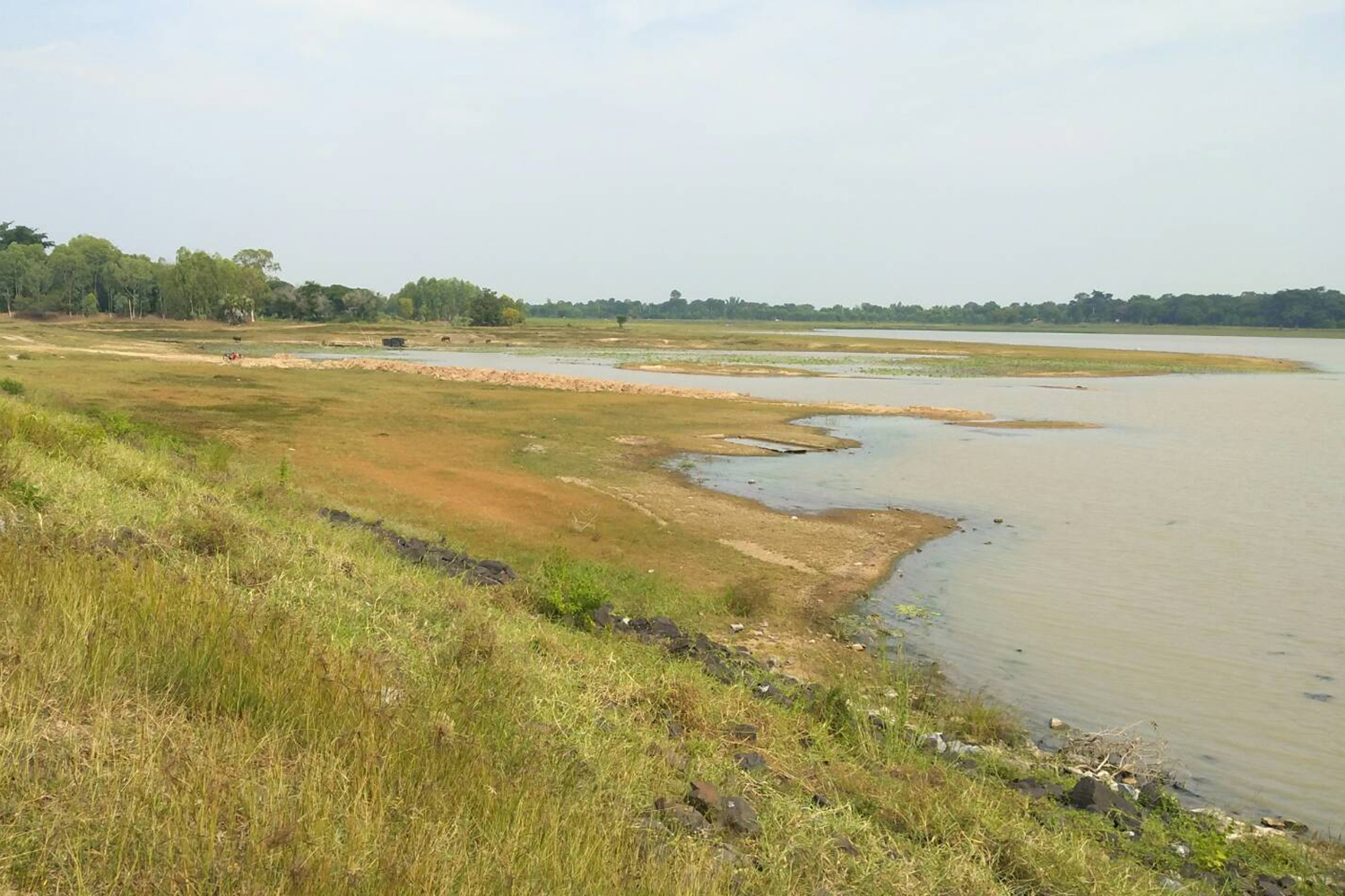 The water level in a reservoir in Phi Mai district of Nakhon Ratchasima has dropped due to the drought that has hit the province. (Photo by Prasit Tangprasert)