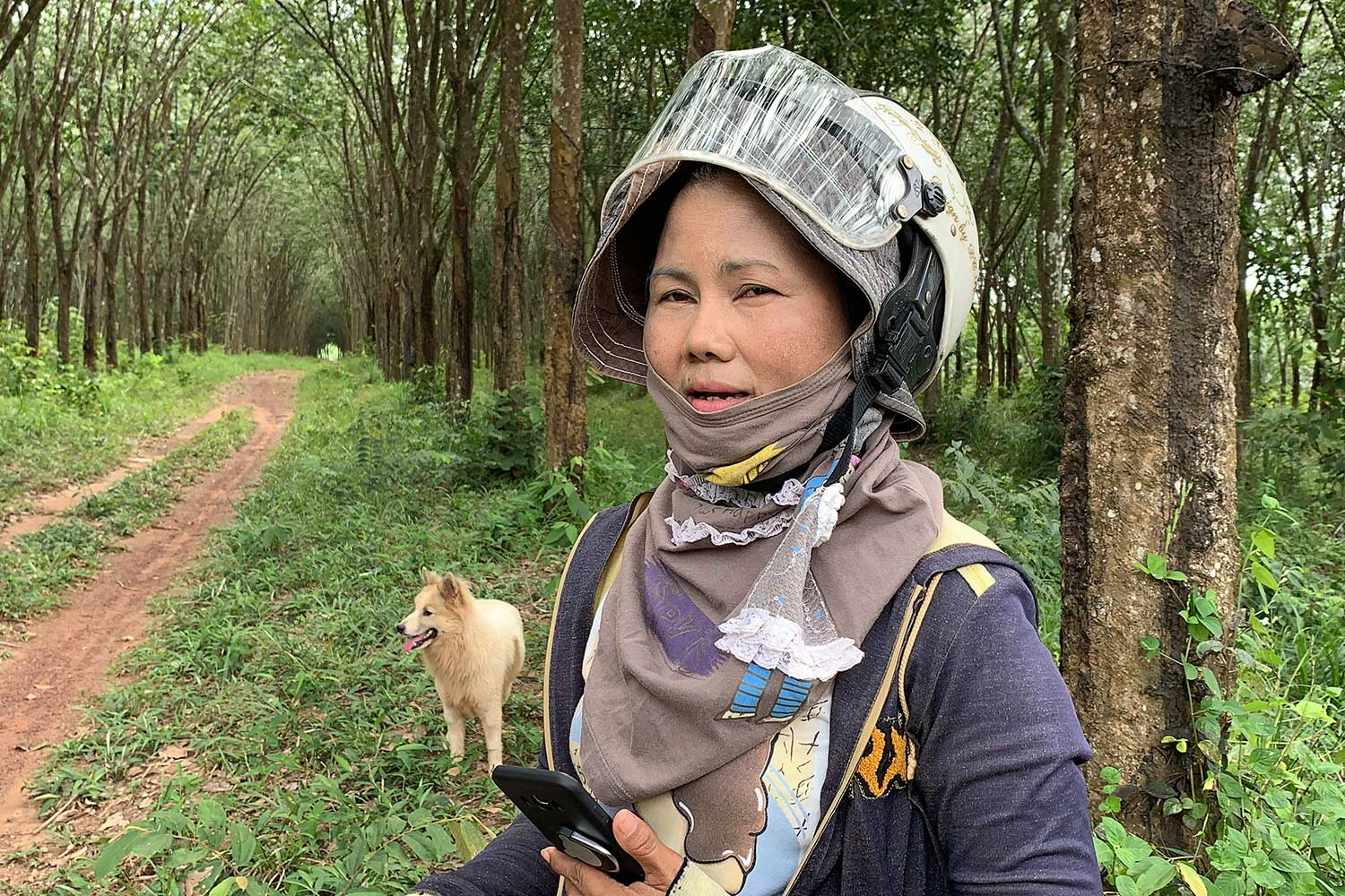 Ms Chayanan Sornsewanee, 50, who rescued a female Bang Kaew dog falling from a vehicle in Bang Klam district of Songkhla two weeks ago, says the dog is waiting for its owner. (Photo by Assawin Pakkawan)