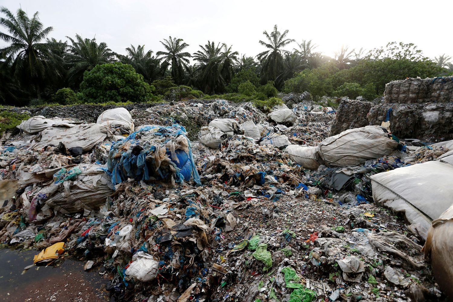 Scrap from an illegal plastic recycling factory are dumped near a palm oil plantation in Jenjarom, Kuala Langat, Malaysia, in 2018. (Reuters photo)