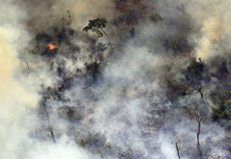 Amazon forest fires melting glaciers over 2,000 km away in Andes