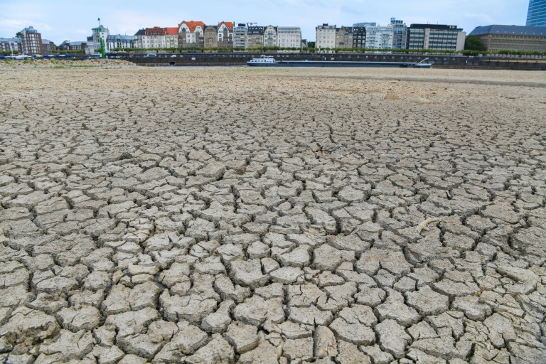 2019 could be second warmest year on record: WMO