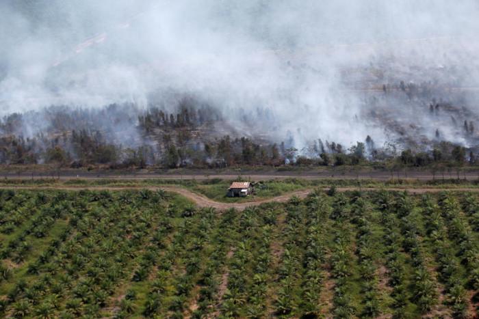 'Unacceptable' EU biofuel tariffs rile Indonesia
