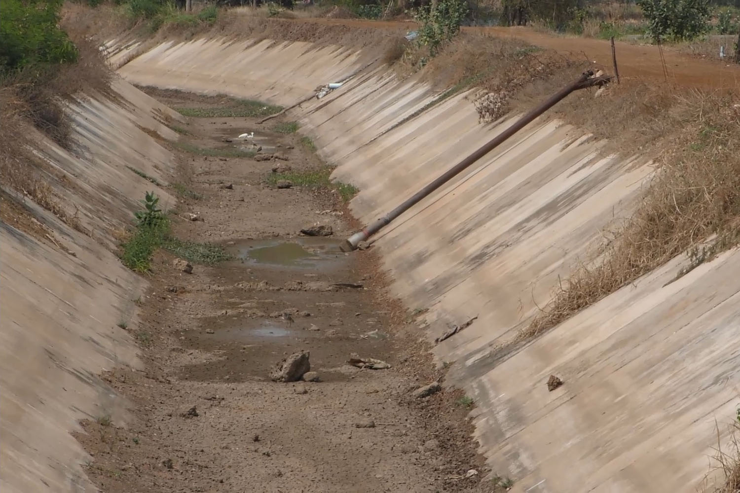 An irrigation canal in Chai Nat province is affected by drought that hit the central region. (Photo by Chudet Seehawong)