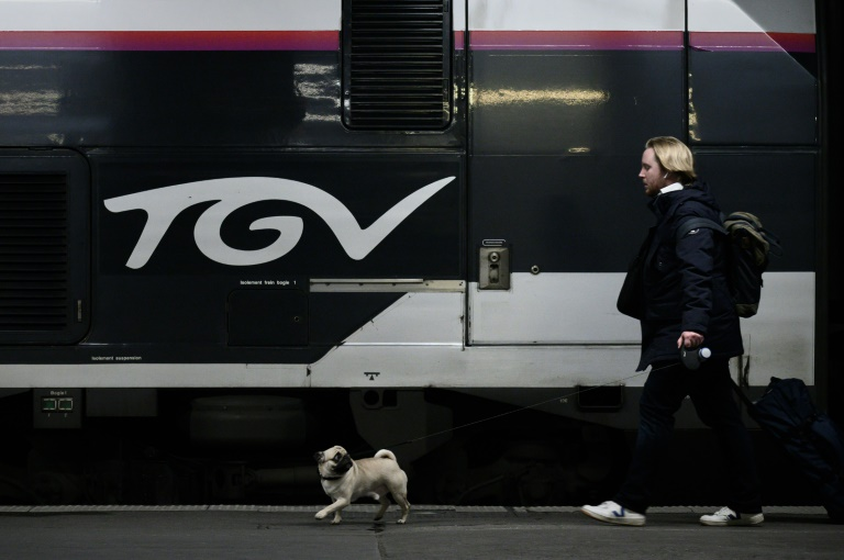 Only half of high-speed TGV trains were running in France.