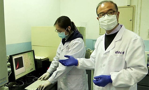 "A team of Chinese scientists has isolated several antibodies that it says are ""extremely effective"" at blocking the ability of the new coronavirus to enter cells, which eventually could be helpful in treating or preventing COVID-19. - REUTERS"