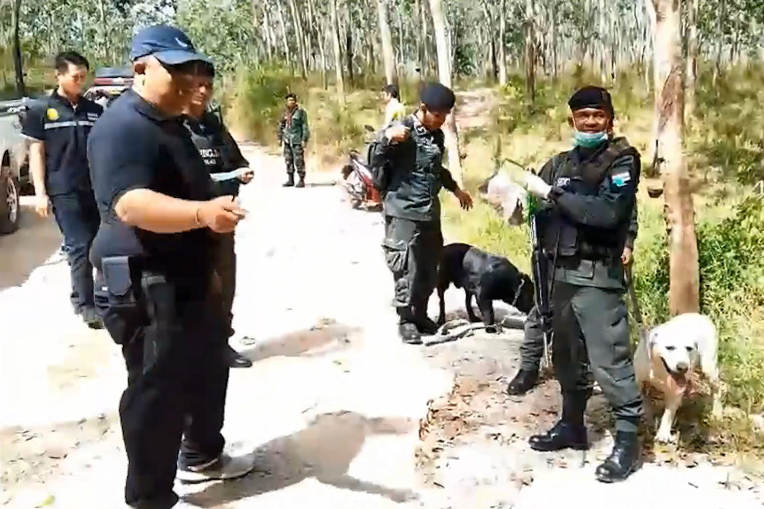Border Patrol Police with sniffer dogs join the hunt for 18 Rohingya still at large after escaping from an immigration prison in Sadao district in Songkhla on Wednesday morning. (Photo by Assawin Pakkawan)