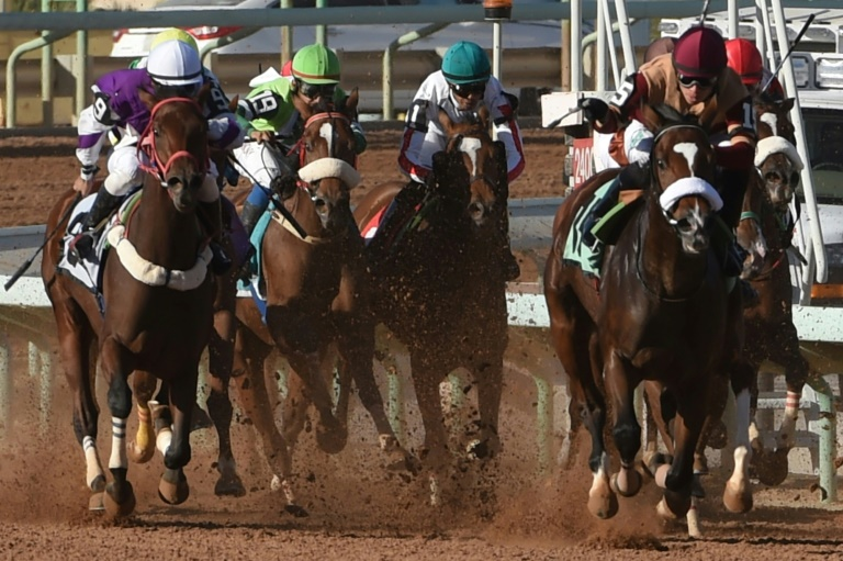 World's richest horse race to be held in Saudi Arabia this week