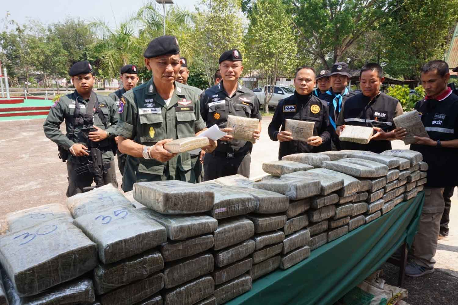 Slabs of dried marijuana, 183 kilogrammes in total, displayed at the border patrol police offices in Nakhon Phanom province. The marijuana was discovered by a BPP patrol on  the Mekong river bank in Tha Uthen district on Sunday night. (Photo: Pattanapong Sripiachai)