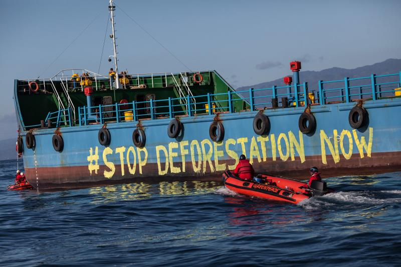 This handout picture taken on Sept 25, 2018 and released by Greenpeace Southeasia shows Greenpeace activists painting