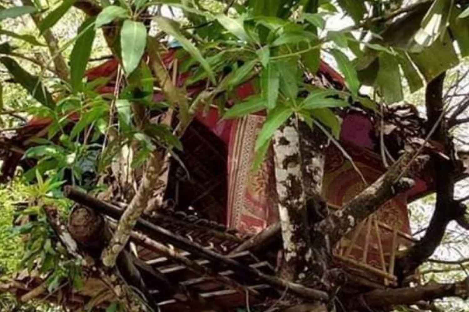 The tree house where a Myanmar man who returned from working in Thailand is living, after his home village in Hpa-an province of Karen State refused to allow him in unless he first spent 14 days in isolation, to prove he is not bringing back Covid-19 disease. (Photo: Assawin Pinitwong)
