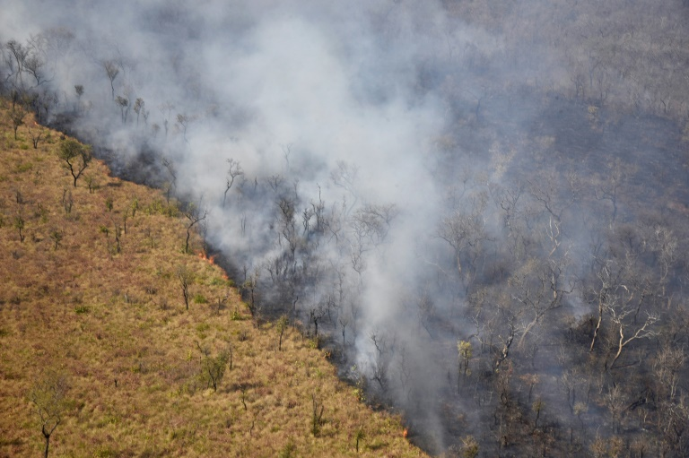 Bolivia registered 15,354 forest fires (similar to the one pictured in August 2019) in the first four months of 2019 -- a 35 percent increase on the same period the year before, the Friends of Nature Foundation (FAN) said