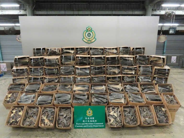 A record 26 tonnes of shark fin were seized by customs officers in Hong Kong.