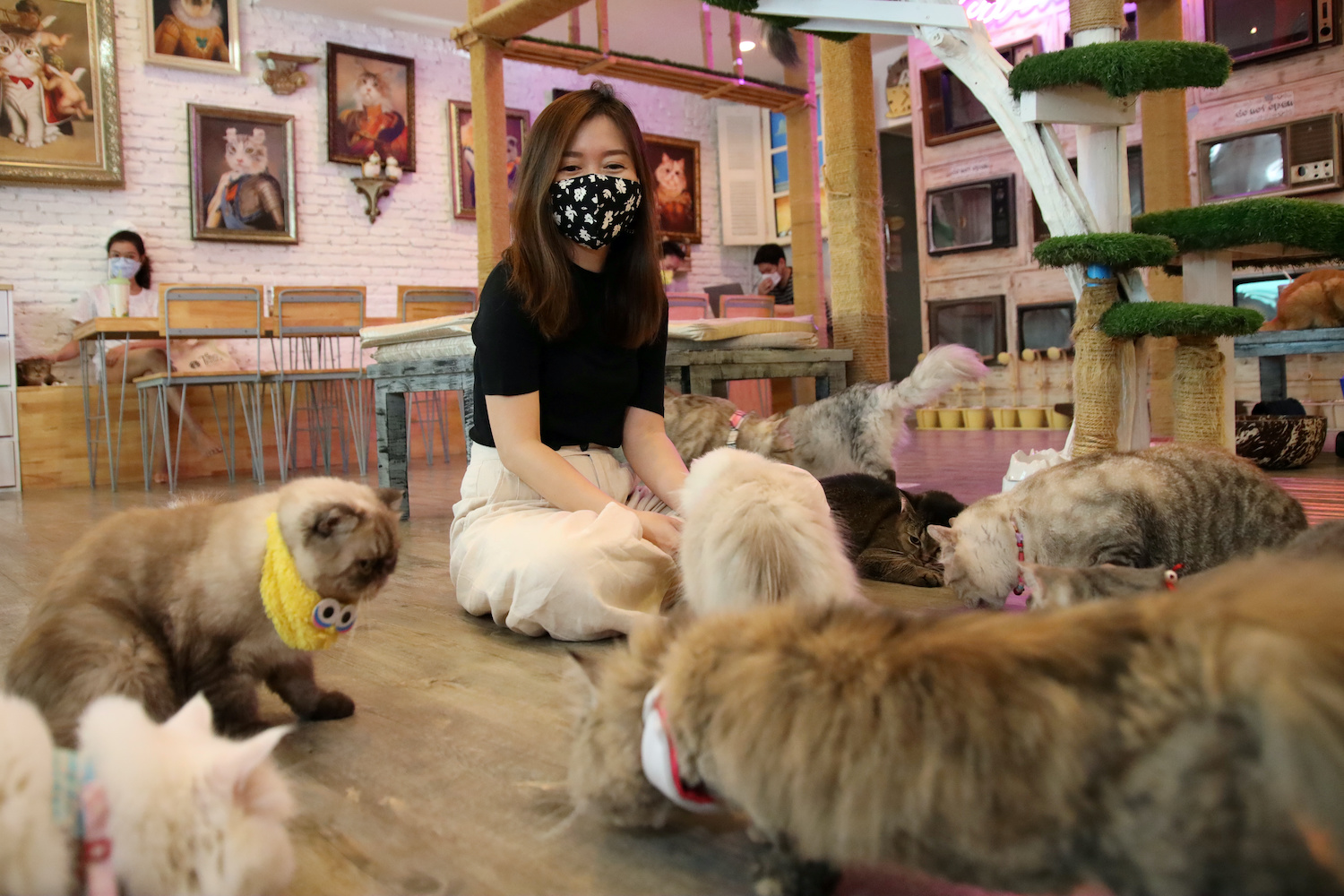 A customer plays with the cats at the Caturday Cat cafe in Ratchathewi district of Bangkok on Thursday. (Reuters Photo)