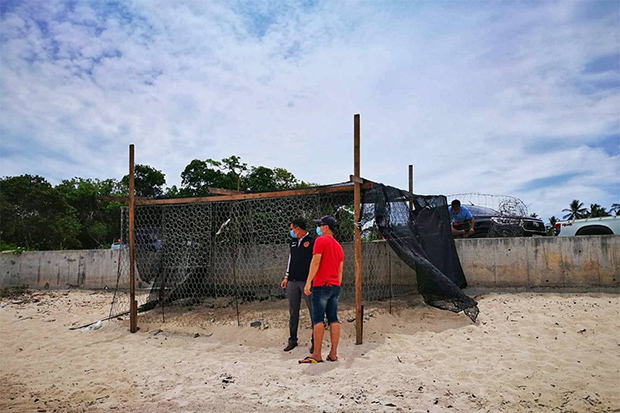 A structure is built to protect a sea turtle nest on a beach on Koh Samui. (Photo by Supapong Chaolan)