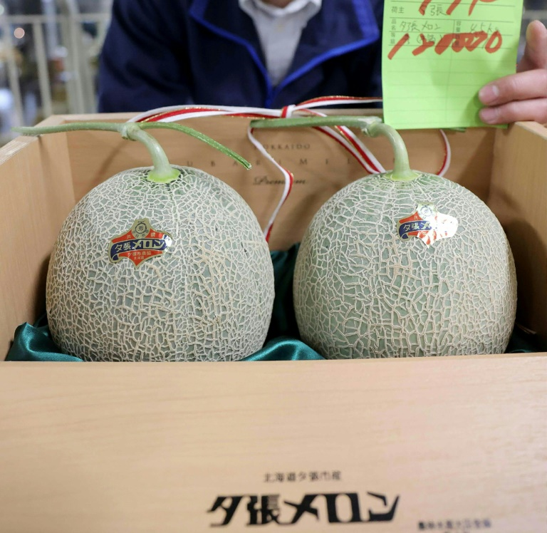 A pair of premium Japanese melons have sold for just a slice of the five million yen ($46,000) reached at auction last year.