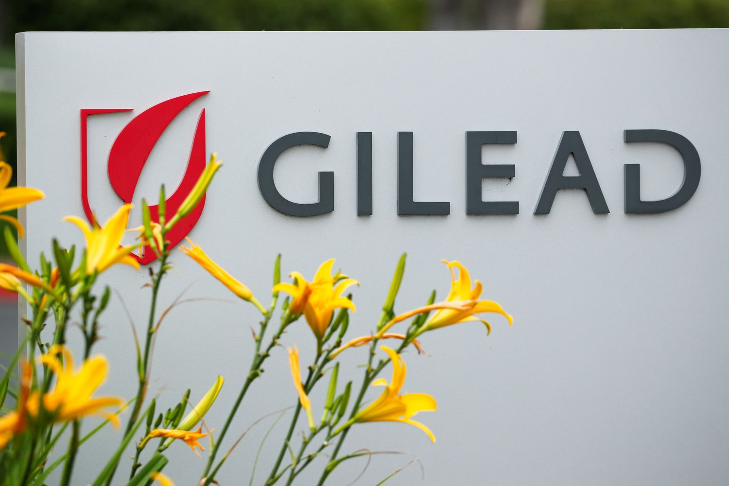 Gilead Sciences Inc pharmaceutical company is seen after they announced a Phase 3 Trial of the investigational antiviral drug Remdesivir in patients with severe coronavirus disease in Oceanside, California, on April 29. (Reuters photo)
