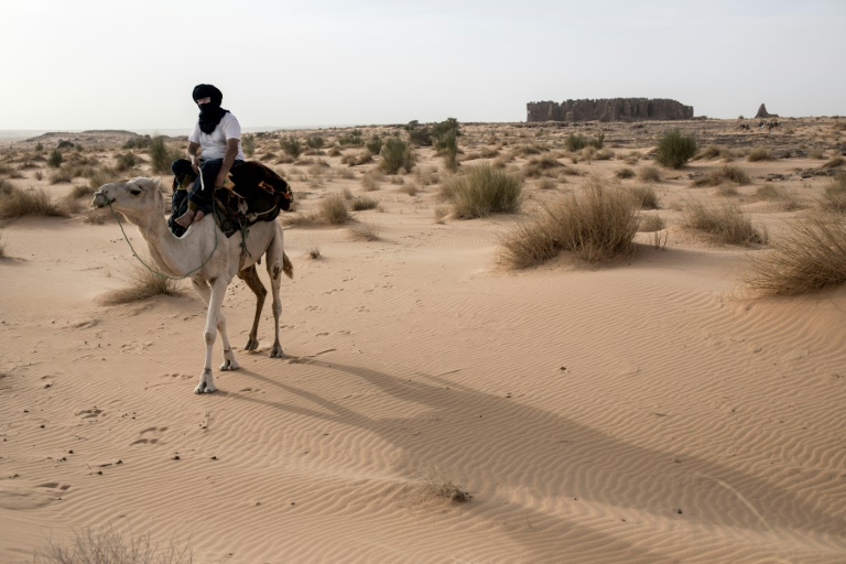 French archaeologist Thierry Tillet has spent nearly 50 years exploring the Sahara.