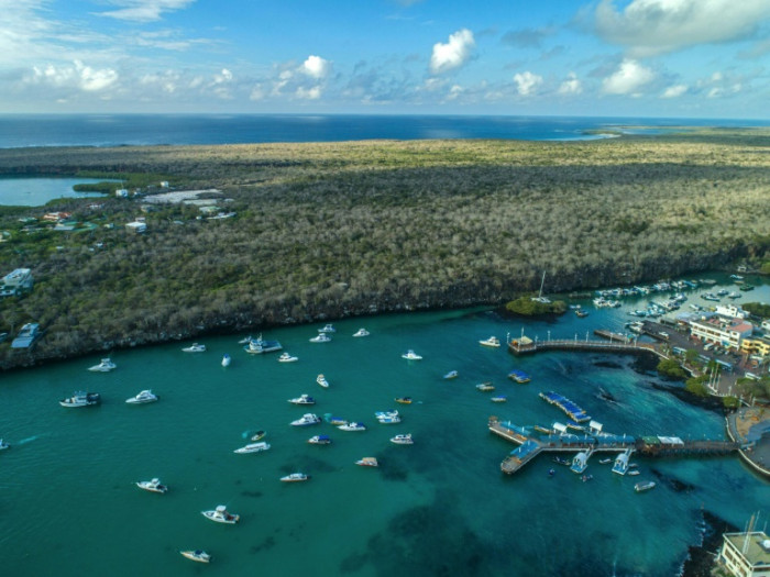 'Adapt and survive' as Galapagos girds for life without tourism