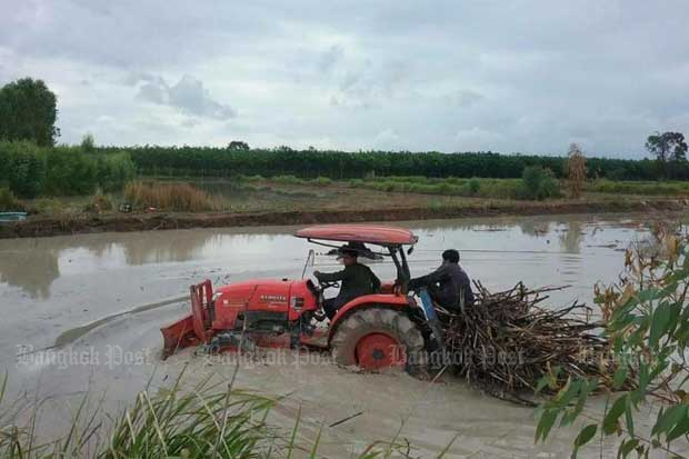 The cabinet has approved the rates of financial assistance to be paid to about 300,000 sugar cane growers nationwide. (Bangkok Post photo)