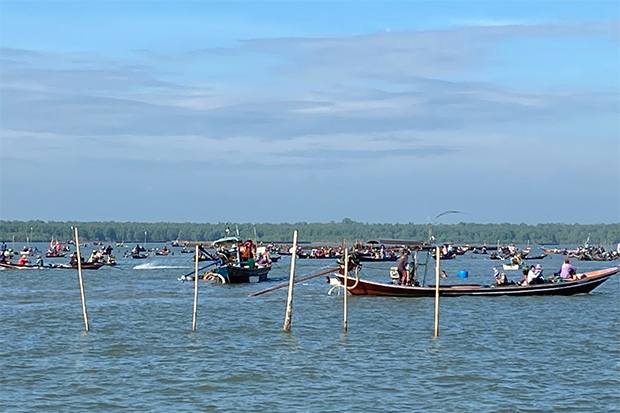Coastal fishermen seeking a catch of cockles return to areas where the farms are located in Phunphin district of Surat Thani on Friday. (Photo by Supapong Chaolan)