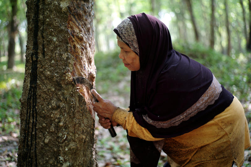 A rubber farmer taps a rubber tree in Narathiwat province, March 18, 2019. (Reuters file photo)