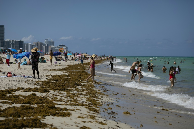 Miami Beach is busy with tourists, but some worry about the risk that the coronavirus could spread.
