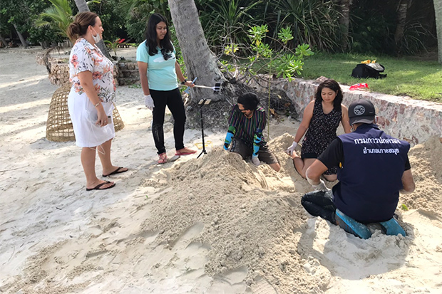 Officials examine a sea turtle nest found on Laem So beach in Koh Samui district of Surat Thani on Sunday. (Photo: Supapong Chaolaen)